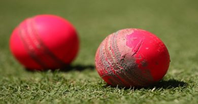 cricket-ball-inmarathi01
