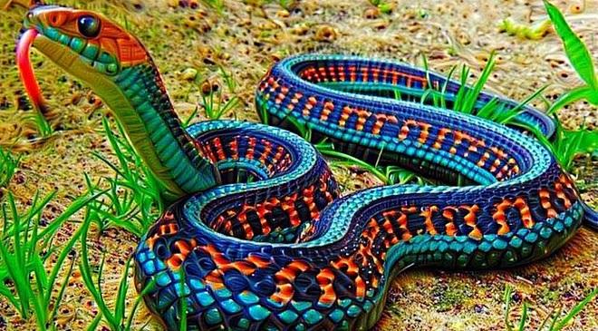 धोकादायक पण तितक्याच सुंदर सापांच्या १० प्रजाती, जरूर बघा…