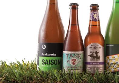 बियर नेहेमी हिरव्या किंवा तपकिरी रंगाच्या बाटलीतच का ठेवली जाते?