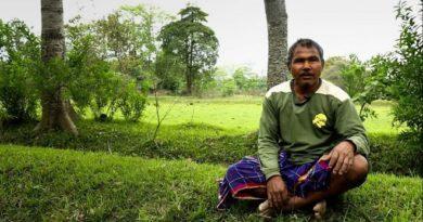 jadav-payeng-inmarathi