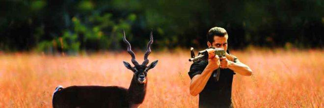 hunt-inmarathi