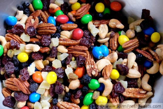 trail-mix-inmarathi