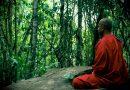 बौद्ध भिक्षू होणं वाटतं तेवढं सोपं नाही! वाचा, काय केल्यावर भिक्षू होता येतं..