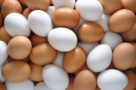 eggs-inmarathi02
