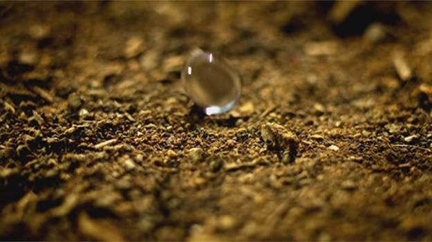 rainfall-head-inmarathi