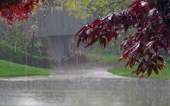 rainy-inmarathi.