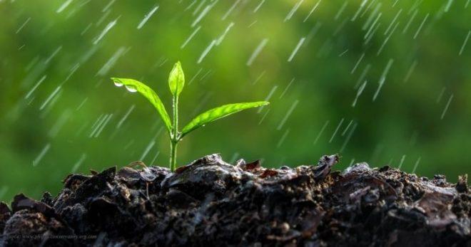 soil smell inmarathi