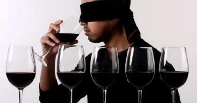 wine tasting inmarathi