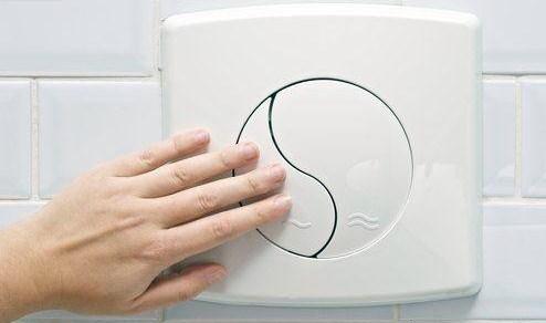 dual-flush-toilet-inmarathi01