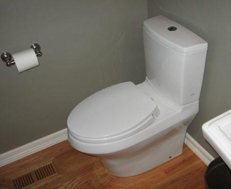 dual-flush-toilet-inmarathi03