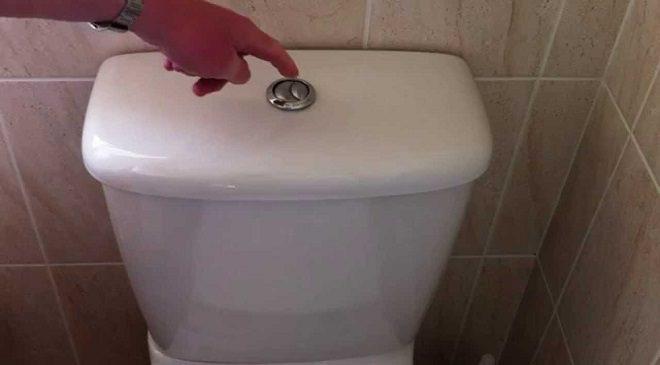 dual-flush-toilet-inmarathi04
