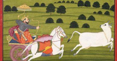 mughal-cow-inmarathi