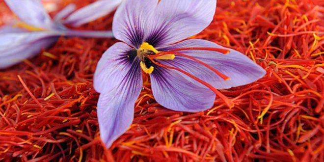 Saffron-inmarathi