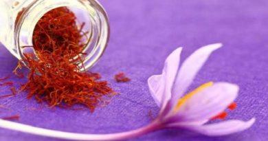 Saffron-inmarathi01