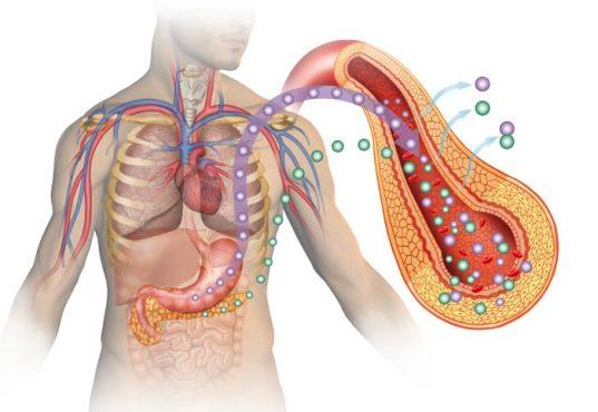 insulin-inmarathi