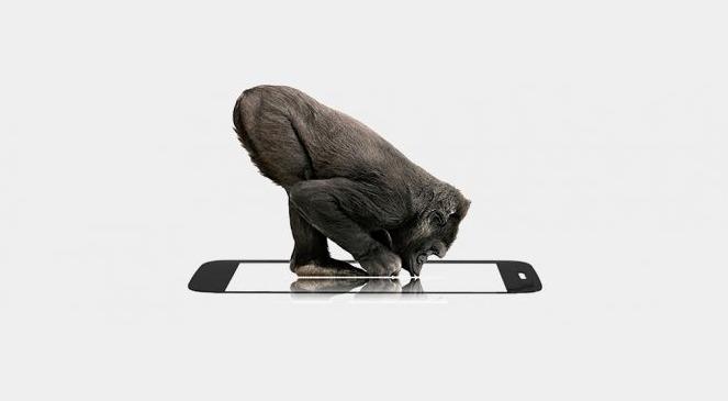 smartphone gorilla glass facts inmarathi