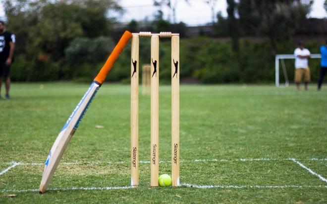 Cricket InMarathi