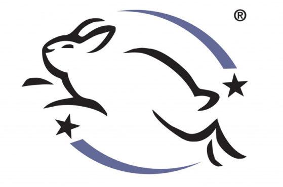 bunny-leaping-inmarathi