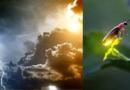 वातावरणाचा अंदाज लावतानाच्या 'या' अंधश्रद्धा चक्क वैज्ञानिक दृष्टीने योग्य आहेत !