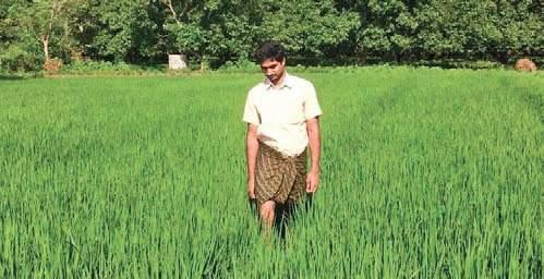 farmer.jpg-inmarathi