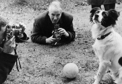 फुटबॉल वर्ल्डकप चोरीला गेला, पुन्हा एका कुत्र्याला सापडला, पुन्हा चोरीला गेला तो अजून सापडलाच नाही!