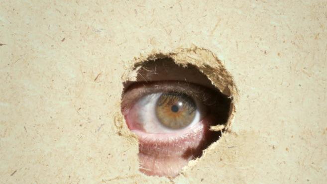 spy inmarathi