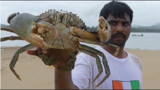 crab inmarathi