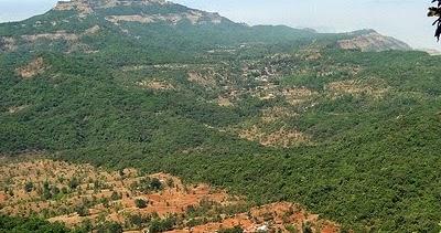 jawali inmarathi