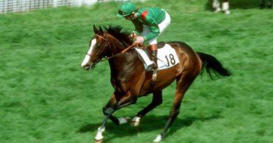 shergar horse inmarathi