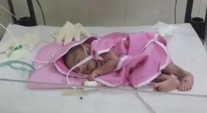 Journalist-baby inmarathi