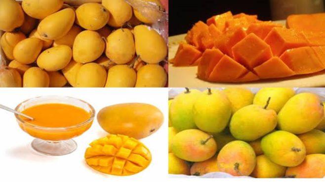 Mayur-Alphanso-Mangoes inmarathi