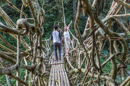 bridge inmarathi