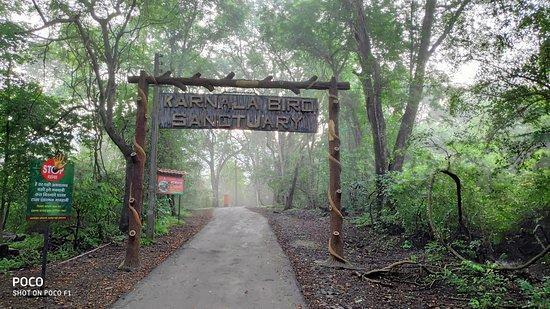 karnala-bird-sanctuary inmarathi