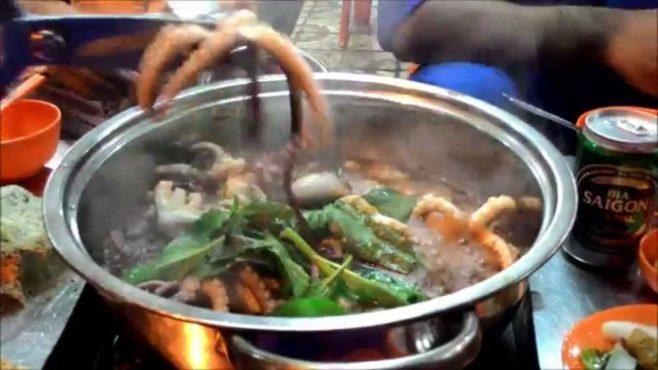 octopus inmarathi