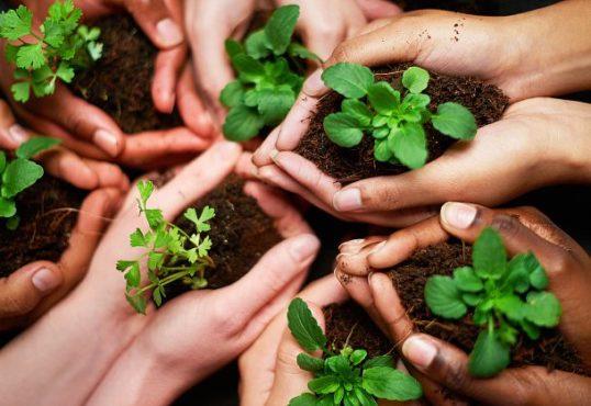 eco friendly inmarathi