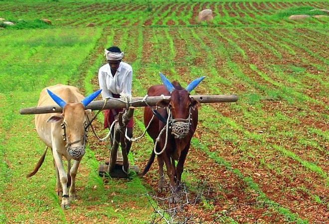 farming inmarathi'