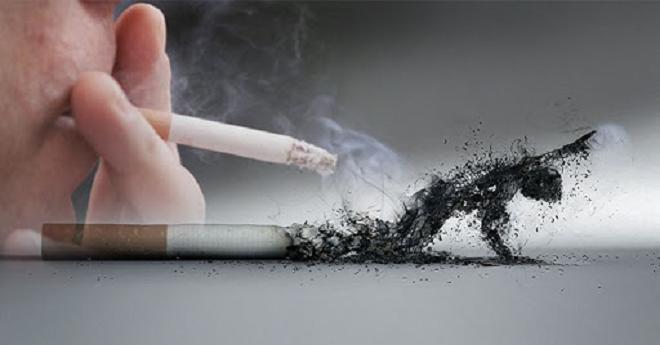 smoking kills inmarathi