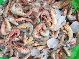 seafood InMarathi