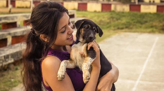 dog inmarathi