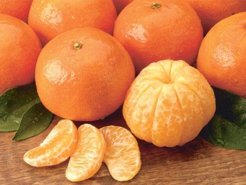 orange inmarathi