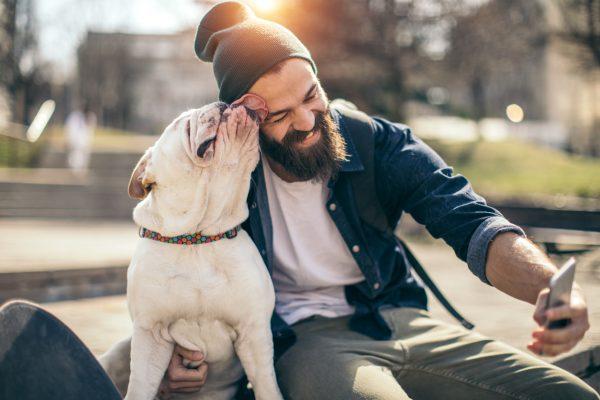 Beard Vs Dog Fur Feature InMarathi