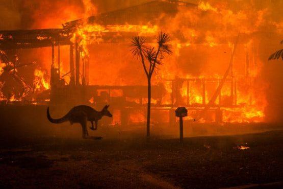 australia fire inmarathi