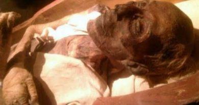 dead 2 inmarathi