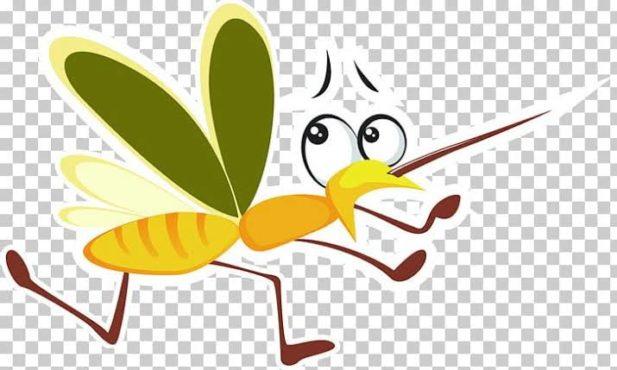 mosquito 4 inmarathi