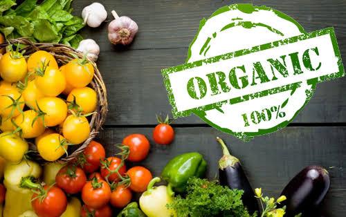 organic inmarathi