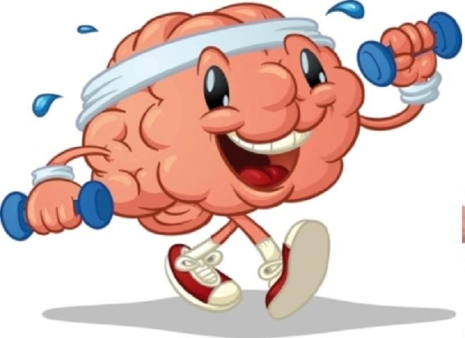 brain inmarathi