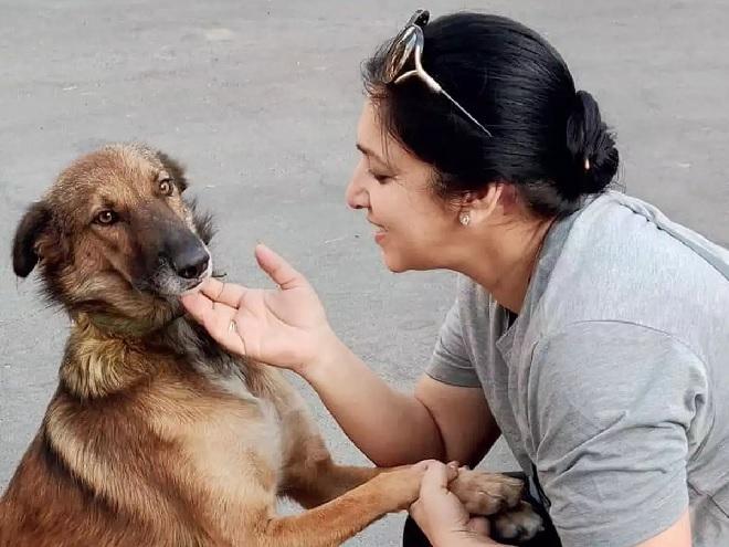 army-dog-ngo-inmarathi