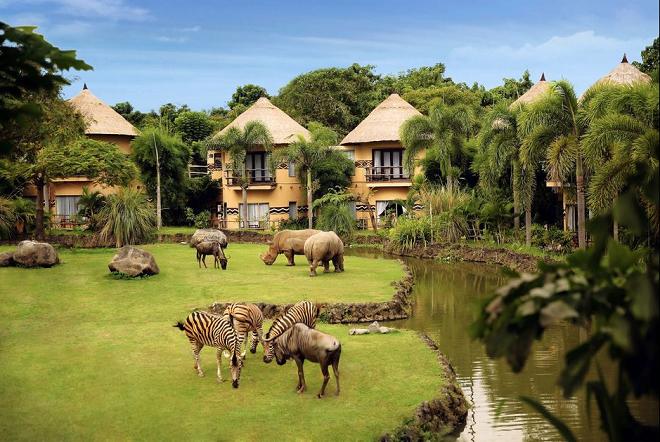 mara safari inmarathi