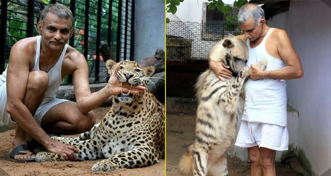 prakash amte tiger inmarathi