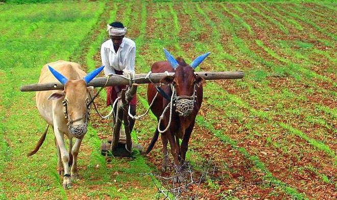 farmers inmarathi